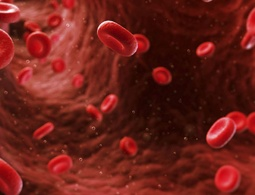 Hematology & Coagulation